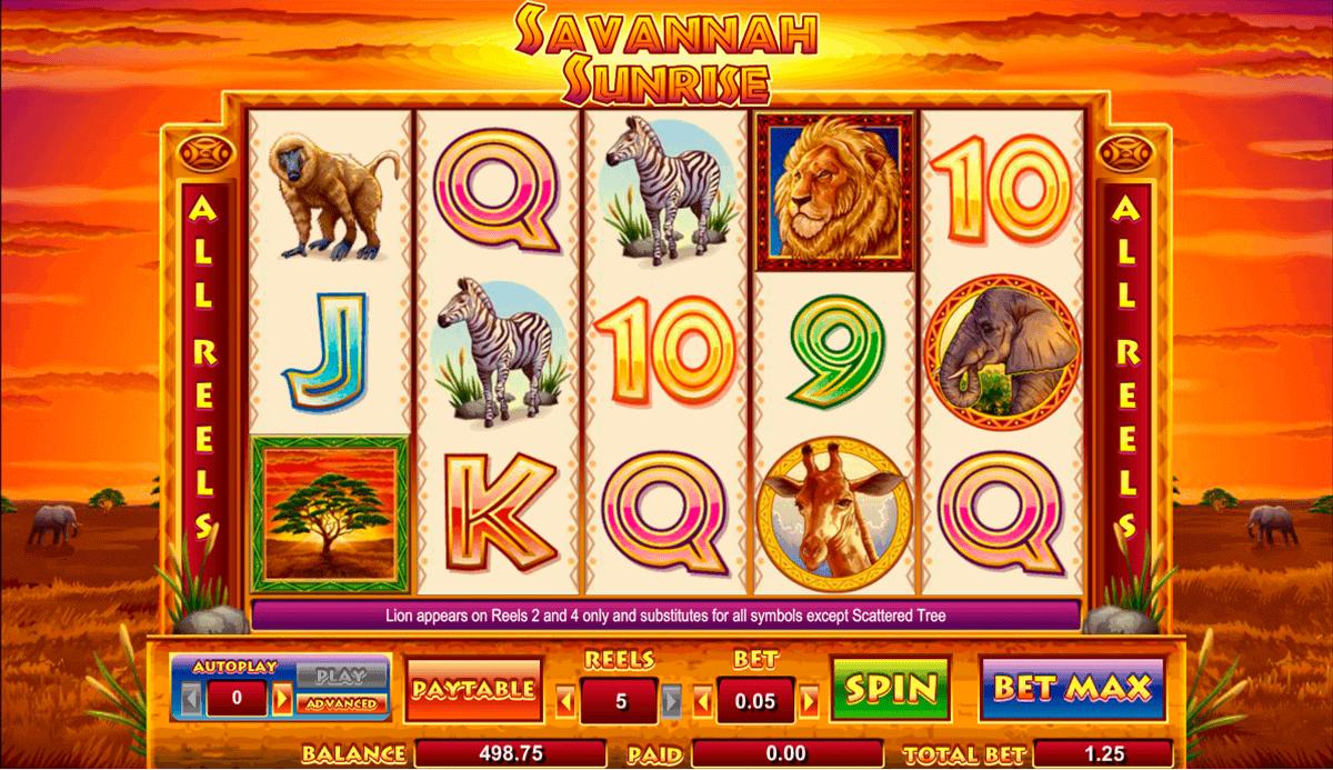 Savannah Sunrise Online Casino Slots Game By Cryptologic
